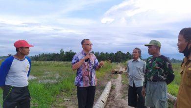Photo of Samsun Pastikan Optimalisasi Lahan Pertanian di Tenggarong Seberang