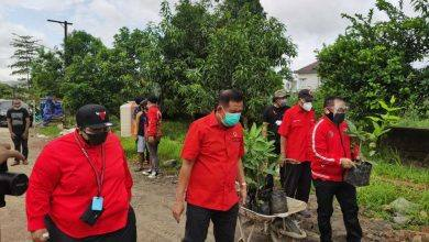 Photo of PDIP Kaltim Fokus Lestarikan Lingkungan, Bentuk Komitmen Politik Hijau